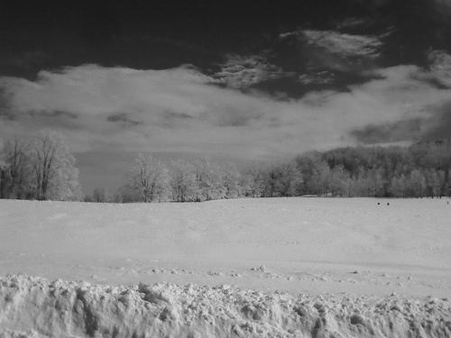 Snow_Angela (2)