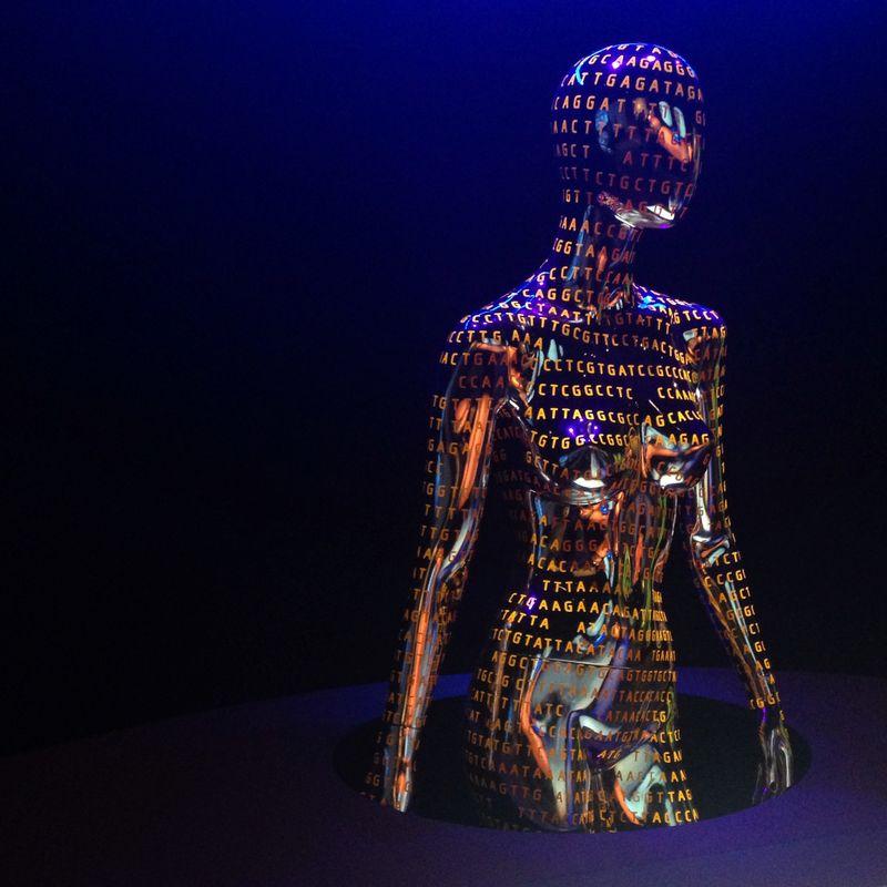 Genome body