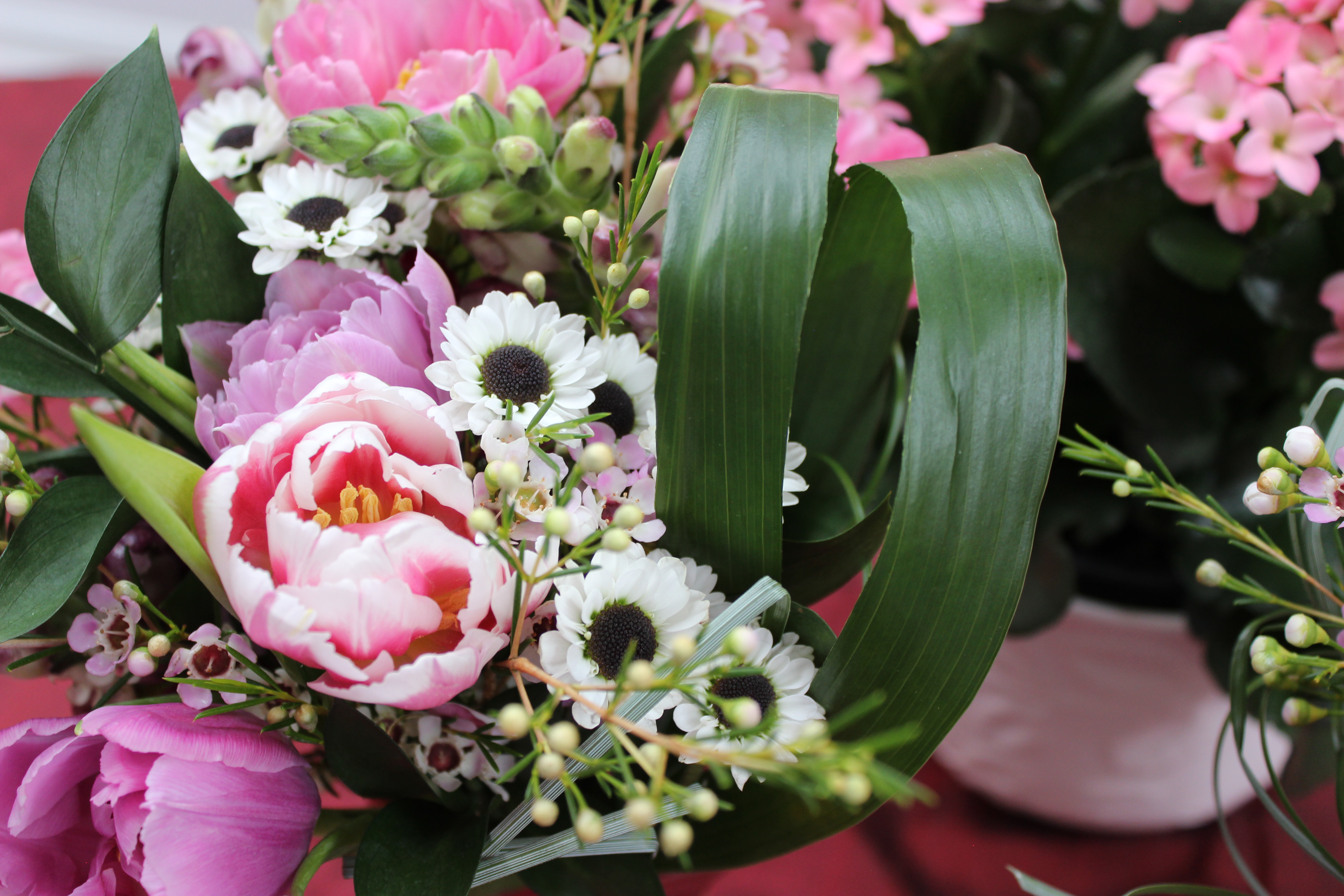Smithsonian associates valentines day bouquet workshop 1100 this greenery is beautiful by itself but it can also amplify the beauty of any flowers placed around it the leaves are long and chic creating a sleek izmirmasajfo Choice Image