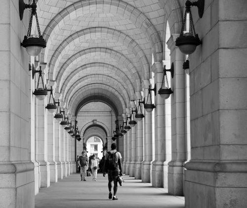 Union Station Safari